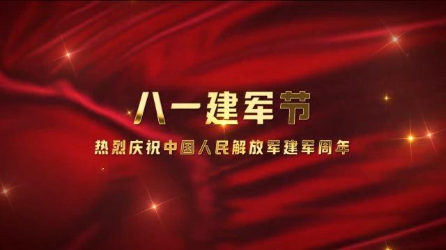 红色五角星八一建军节图文视频8预览图