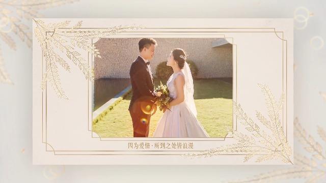 ins风优雅简约婚礼邀请函视频3预览图